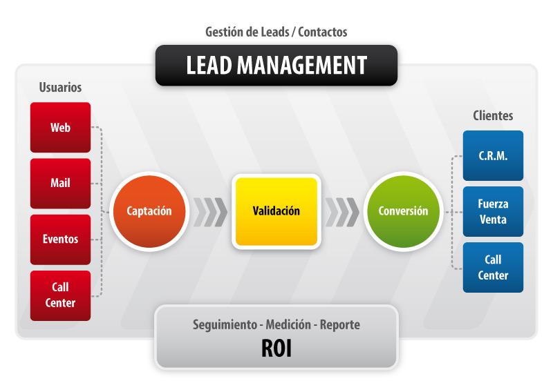 Gráfico de Lead Management - Gestión de contactos
